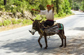 Village resident entertains tourists riding on a donkey — Stock Photo