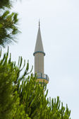Minaret on the sky background. Pine in the foreground. — Stock Photo