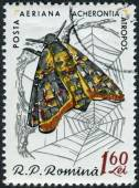 Postage stamp printed in Romania shows Death's-head Hawk Moth (Acherontia atropos) — Foto Stock