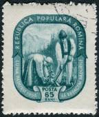 Postage stamp printed in Romania shows Farmer couple in costume planting trees — Foto Stock