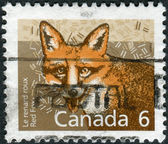 Postage stamp printed in Canada shows the mammal Red Fox — Stock Photo