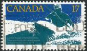Postage stamp printed in Canada, dedicated to Canoe-kayak world championship, shows White water kayak race — Foto Stock
