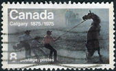 "Postage stamp printed in Canada, dedicated to Centenary of the founding of Calgary, shows the ""Untamed"" (Wild Horse Race) — Fotografia Stock"