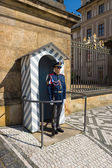 Soldiers guard of honor around the presidential palace. Prague Castle. — Stock Photo