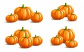 Bunch of pumpkins on white background — Stock Vector