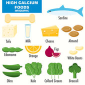 High Calcium foods infographics — Stock Vector