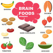 Brain Foods infographics — Stock Vector