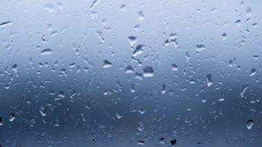 Rain drops. — Stock Video