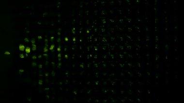 Laser light. — Stock Video