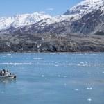 Glacier Bay National Park Alaska — Stock Photo #58516469