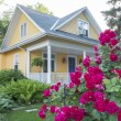 Yellow House with Pink Rose Bush in Front — Stockfoto #58537767