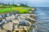 Rocky banks on Ocracoke Island of North Carolina's Outer Banks — Stock Photo