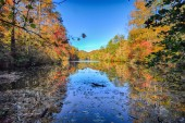 Autumn of yellow trees with reflection on lake — Stock Photo