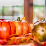 Autumn harvest with pumpkins on table — Stock Photo #56051441