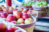 Large bushel basket full of fresh locally grown red apples at lo — Stock Photo