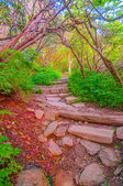 Craggy Garden Trail on an autumn day — Stock Photo