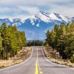 Landscape with Humphreys Peak Tallest in Arizona — Stock Photo #70841065