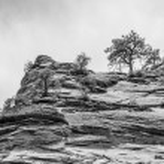 Zion Canyon National Park Utah — Stock Photo #71352635