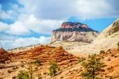 Zion Canyon National Park Utah — Stock Photo