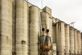 Large farm  industrial silos — Stock Photo