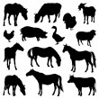 Silhouettes of farm animals — Stock Vector #55234933