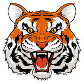 Angry tiger — Stock Vector