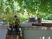Wine tasting on scenary wine farm, South Africa — Stock Photo
