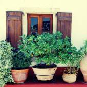 Window and flower pots (Crete, Greece) — Stock Photo