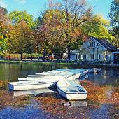 Jezioro w parku jesień — Zdjęcie stockowe