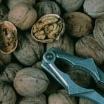 Walnut and nut cracker — Stock Photo #54035349