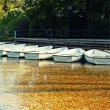 White boats on the lake in the autumn park — Foto Stock #55881491