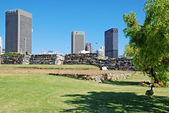 City park and view of Downtown of Cape Town, South Africa. — Stock Photo