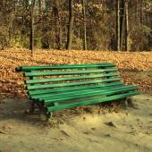 Green empty bench in the autumn park — Stock Photo