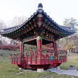Ornate chinese pavilion in autumn park — Stock Photo #59399599