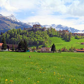 Gruyere kasteel en Alpen, Zwitserland — Stockfoto