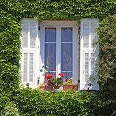 Provence window with white shutters and ivy, Provence, France — Stock Photo