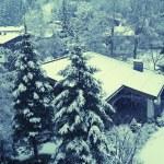 Vertical winter landscape in Tirol Alps, Austria — Stock Photo #61251681