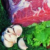 Filé de carne crua com verdor e alho — Foto Stock