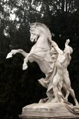 Horse statue, Hofburg complex, Vienna, Austria — Stok fotoğraf