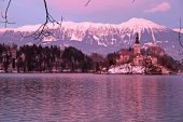 Bled Lake and island church, Slovenia. — Stock Photo