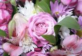 Beautiful bouquet of flowers close up — Stock Photo