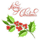 Christmas mistletoe branch drawing. — Stock Vector