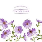 Testa di fiore di crisantemo. — Vettoriale Stock
