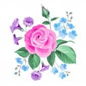 Hand drawn rose. — Stock Vector