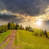 Path to mountain forest at sunset — Stock Photo