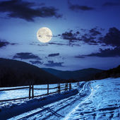 Snowy road to coniferous forest in mountains in moon light — Stock Photo