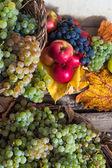 果実と葉木の基盤の紅葉静物 — ストック写真