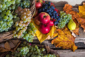 Autumnal still life with fruit and leaves on a wooden base — Stock Photo