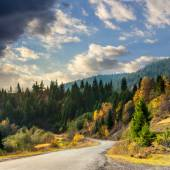 Winding road to forest in mountains — Stock Photo