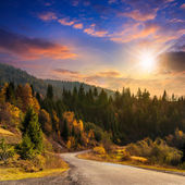 Winding road to forest in mountains at sunset — Stock Photo